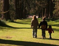 La violazione del diritto del padre da parte della madre collocataria. La Sindrome della Madre Malevola