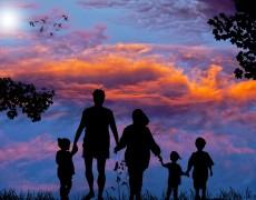 La disciplina dei rapporti patrimoniali dei conviventi di fatto: il contratto di convivenza